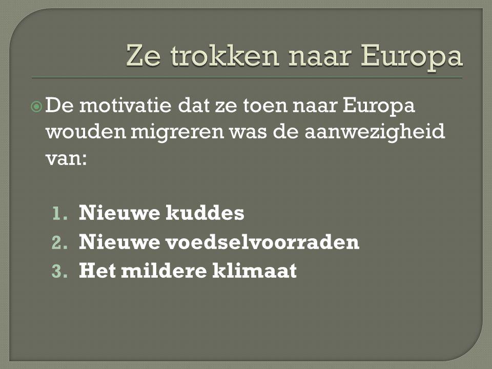 Ze trokken naar Europa De motivatie dat ze toen naar Europa wouden migreren was de aanwezigheid van: