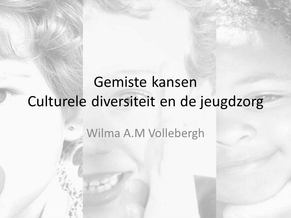 Gemiste kansen Culturele diversiteit en de jeugdzorg