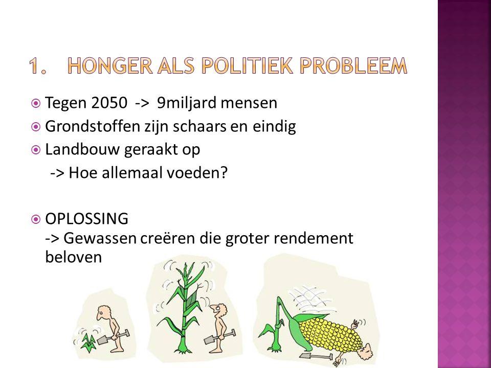 Honger als politiek probleem