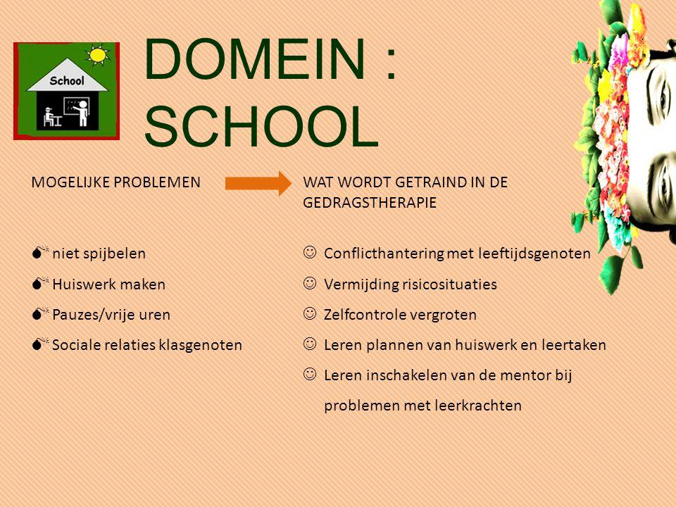 DOMEIN : SCHOOL MOGELIJKE PROBLEMEN