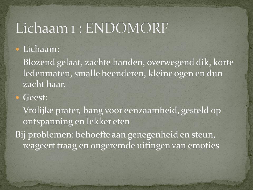 Lichaam 1 : ENDOMORF Lichaam: