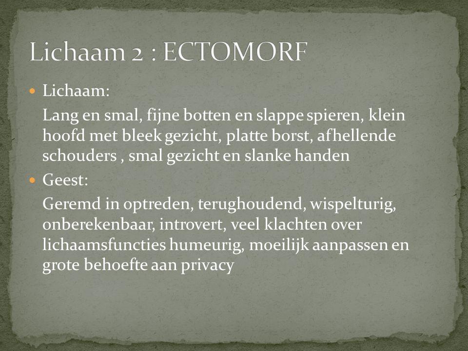 Lichaam 2 : ECTOMORF Lichaam: