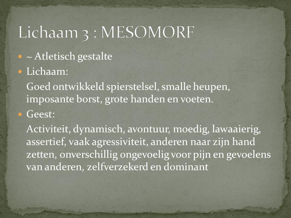Lichaam 3 : MESOMORF ~ Atletisch gestalte Lichaam: