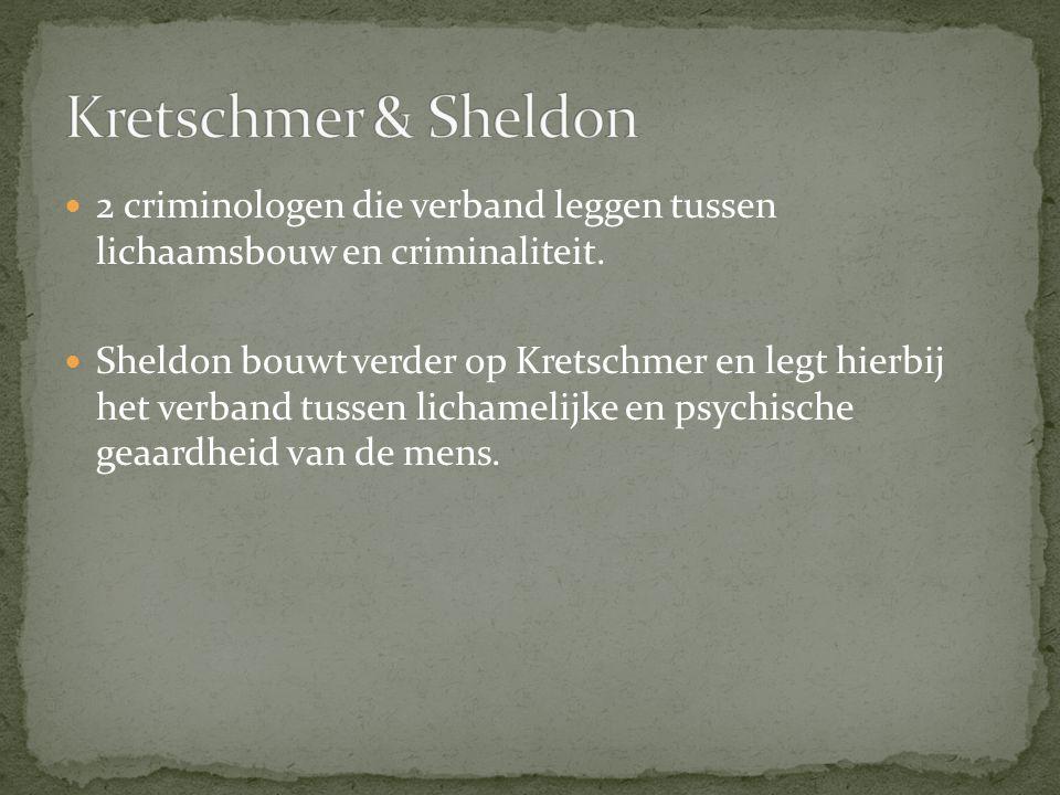 Kretschmer & Sheldon 2 criminologen die verband leggen tussen lichaamsbouw en criminaliteit.