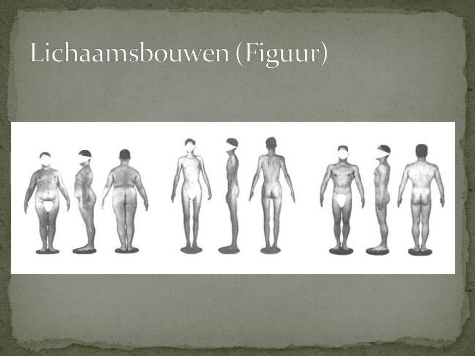 Lichaamsbouwen (Figuur)
