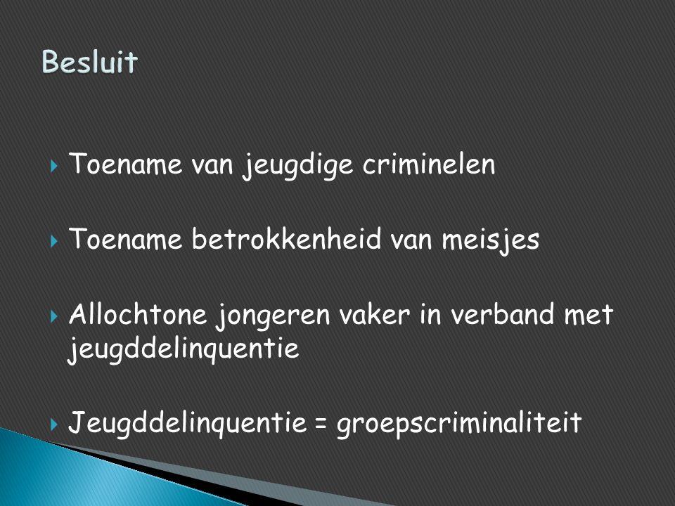 Besluit Toename van jeugdige criminelen