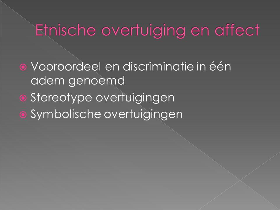 Etnische overtuiging en affect