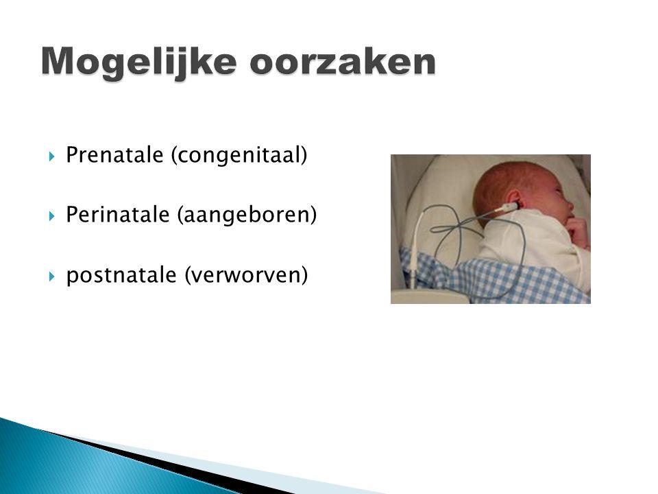 Mogelijke oorzaken Prenatale (congenitaal) Perinatale (aangeboren)