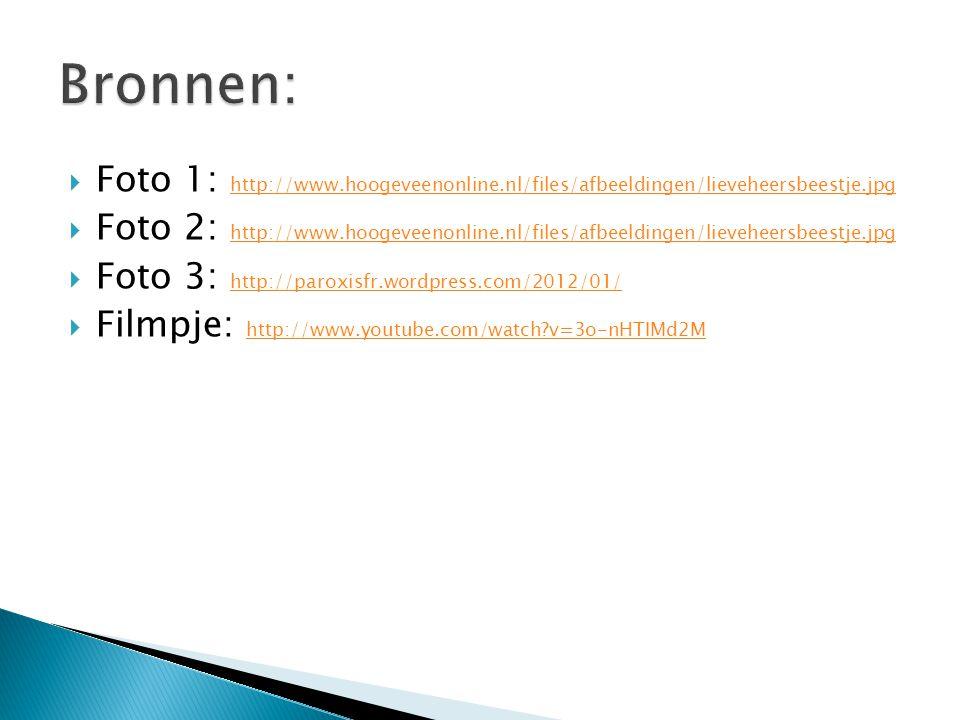 Bronnen: Foto 1: http://www.hoogeveenonline.nl/files/afbeeldingen/lieveheersbeestje.jpg.