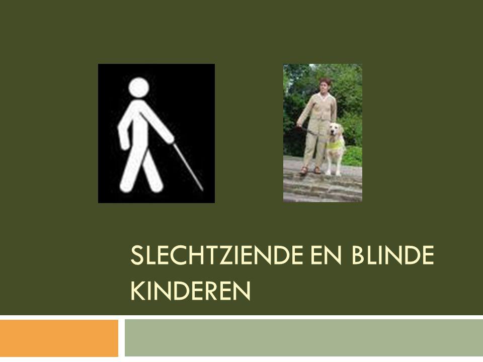 Slechtziende en blinde kinderen