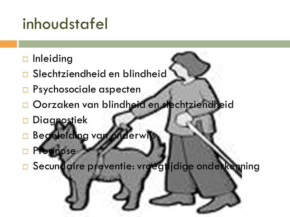 inhoudstafel Inleiding Slechtziendheid en blindheid