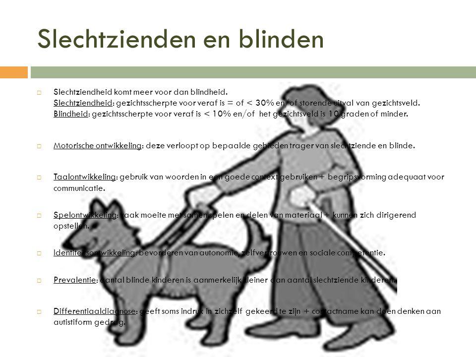 Slechtzienden en blinden