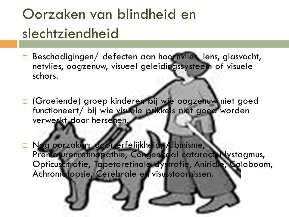 Oorzaken van blindheid en slechtziendheid