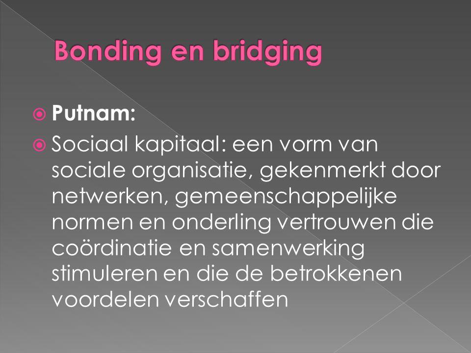 Bonding en bridging Putnam: