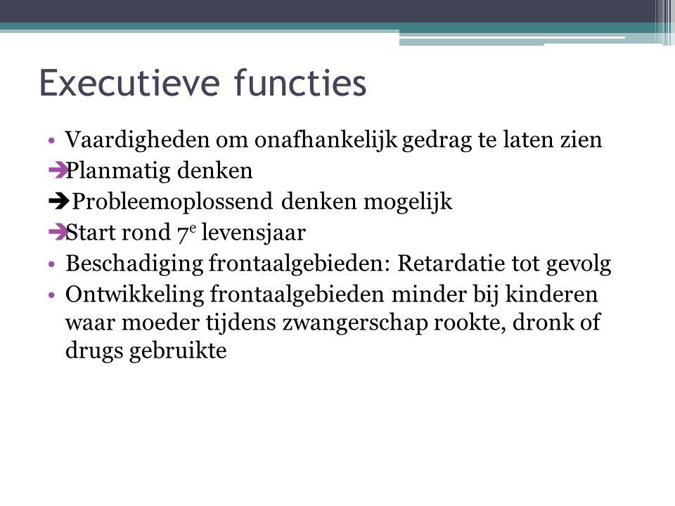 Executieve functies Vaardigheden om onafhankelijk gedrag te laten zien