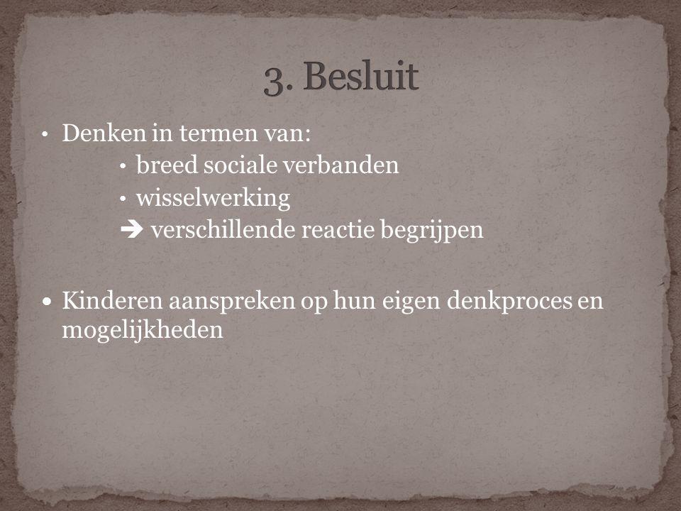 3. Besluit Denken in termen van: breed sociale verbanden wisselwerking