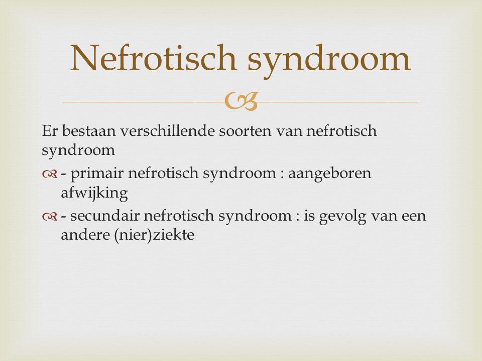 Nefrotisch syndroom Er bestaan verschillende soorten van nefrotisch syndroom. - primair nefrotisch syndroom : aangeboren afwijking.