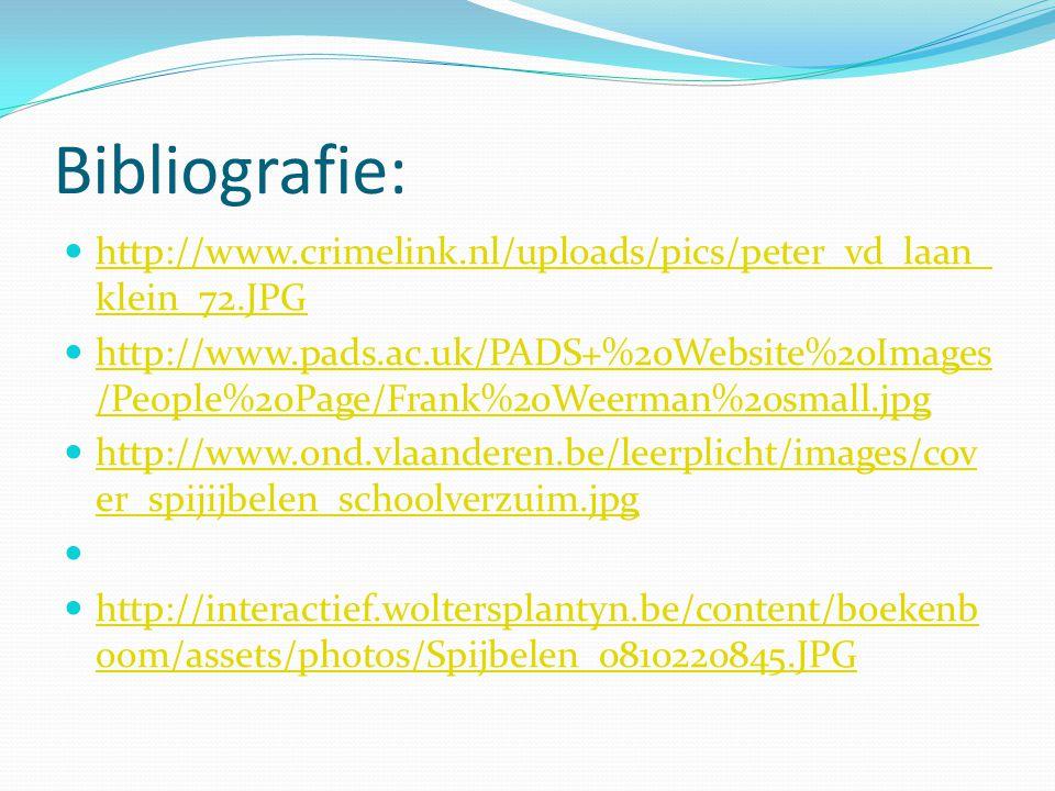 Bibliografie: http://www.crimelink.nl/uploads/pics/peter_vd_laan_klein_72.JPG.