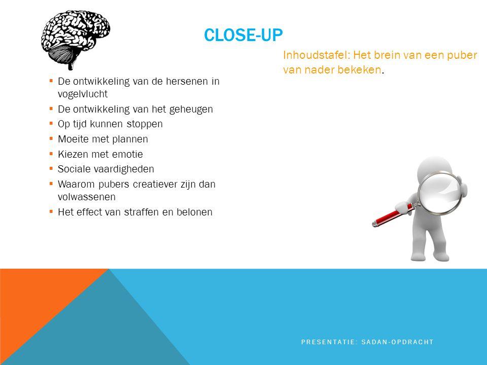 Close-up Inhoudstafel: Het brein van een puber van nader bekeken.