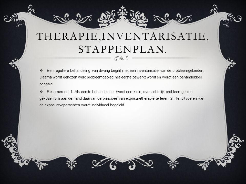 therapie,inventarisatie, stappenplan.