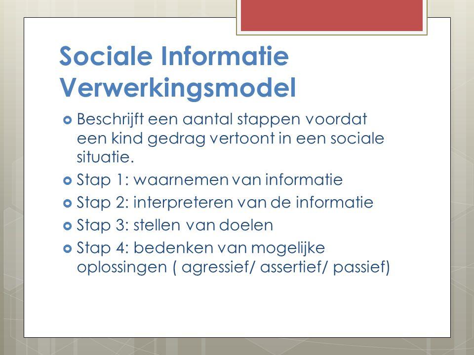 Sociale Informatie Verwerkingsmodel