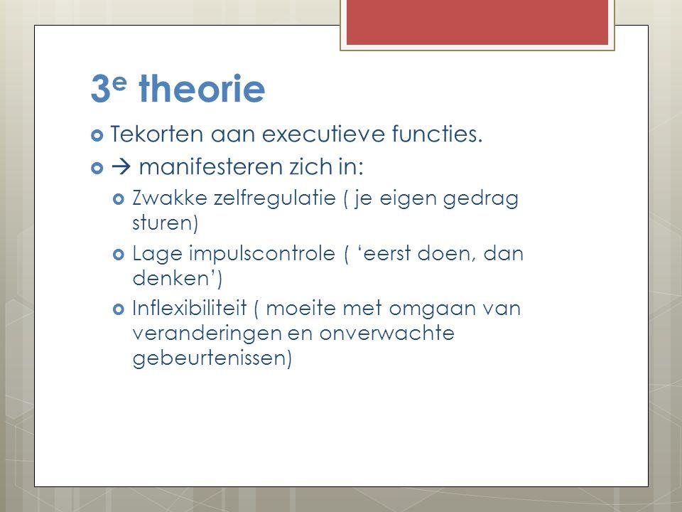 3e theorie Tekorten aan executieve functies.  manifesteren zich in: