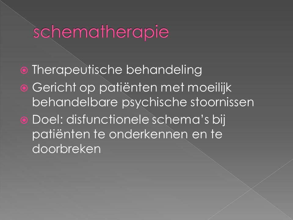schematherapie Therapeutische behandeling