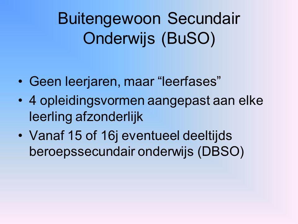 Buitengewoon Secundair Onderwijs (BuSO)