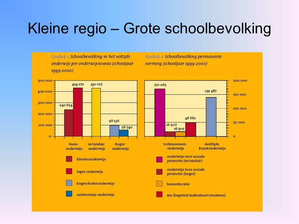 Kleine regio – Grote schoolbevolking