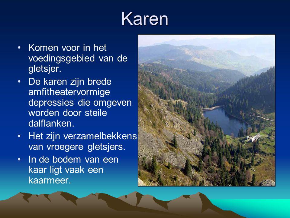 Karen Komen voor in het voedingsgebied van de gletsjer.
