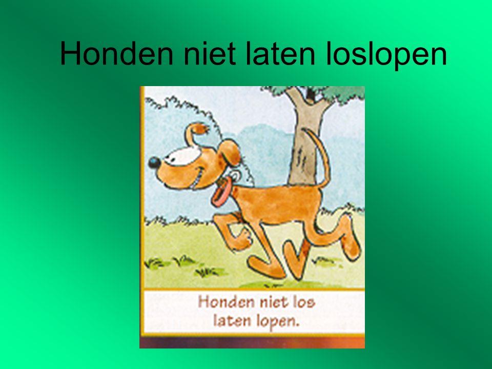 Honden niet laten loslopen