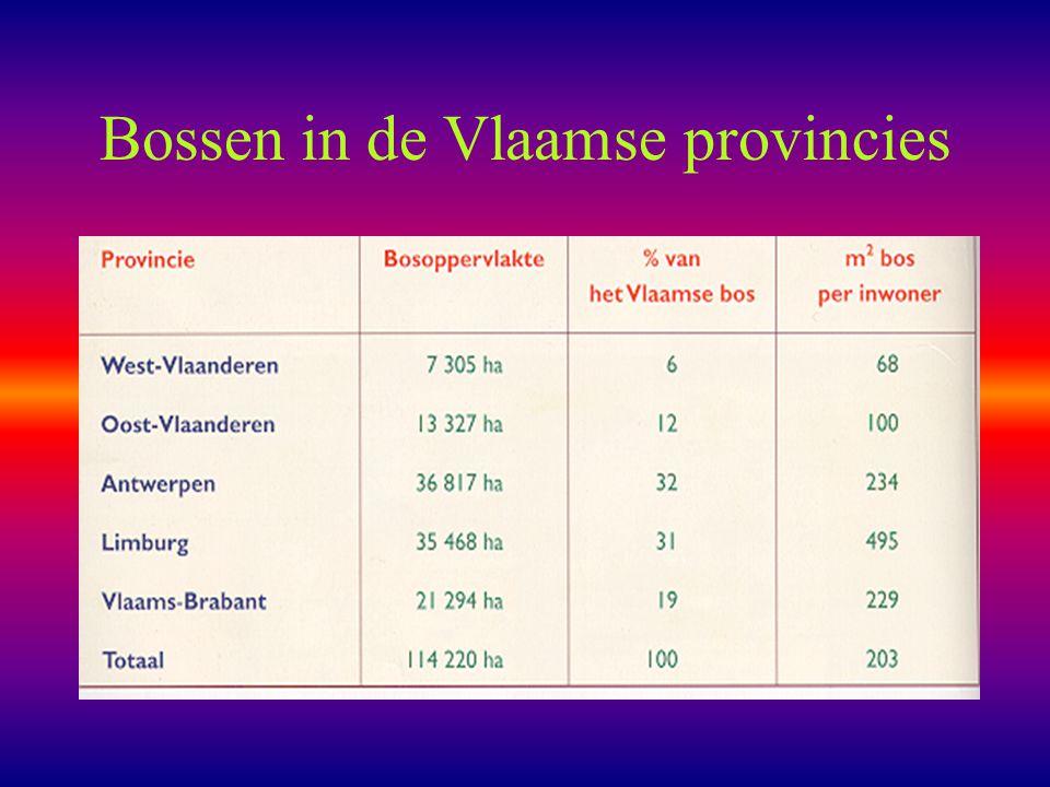 Bossen in de Vlaamse provincies