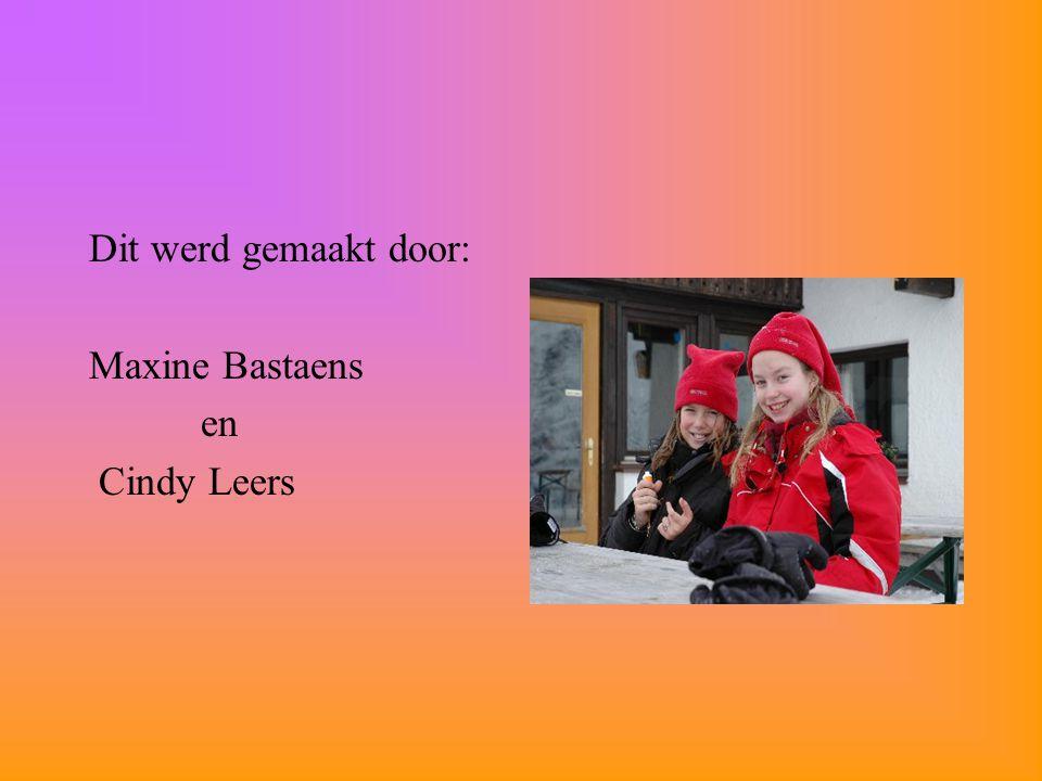 Dit werd gemaakt door: Maxine Bastaens en Cindy Leers