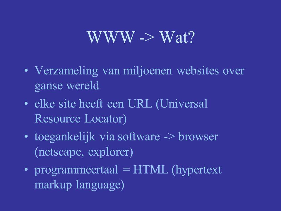 WWW -> Wat Verzameling van miljoenen websites over ganse wereld