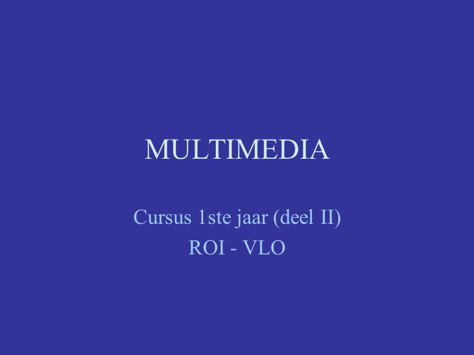 Cursus 1ste jaar (deel II) ROI - VLO