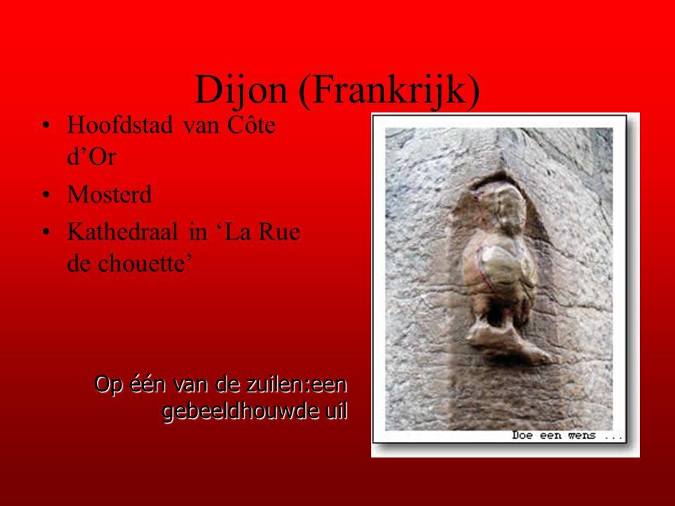 Dijon (Frankrijk) Hoofdstad van Côte d'Or Mosterd