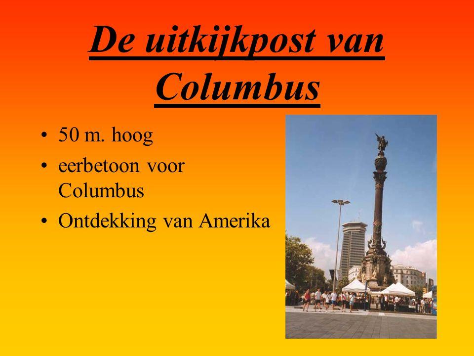De uitkijkpost van Columbus