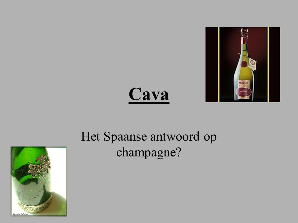 Het Spaanse antwoord op champagne