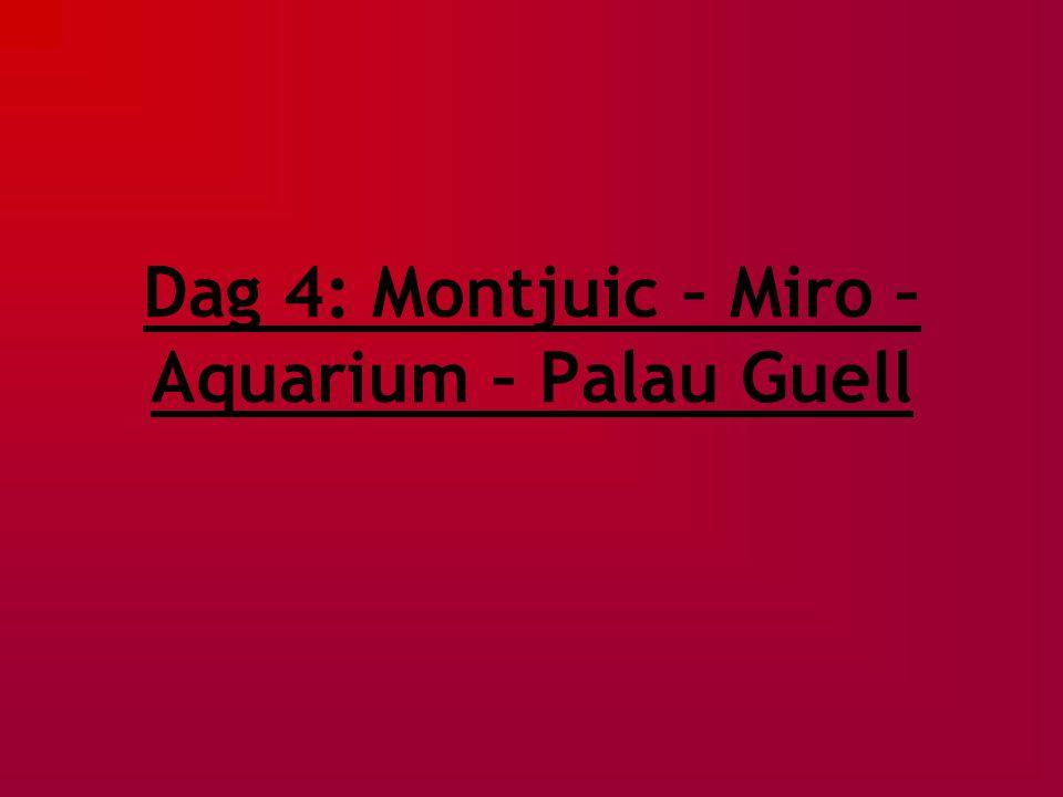 Dag 4: Montjuic – Miro – Aquarium – Palau Guell