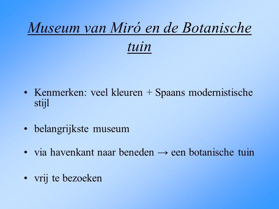 Museum van Miró en de Botanische tuin