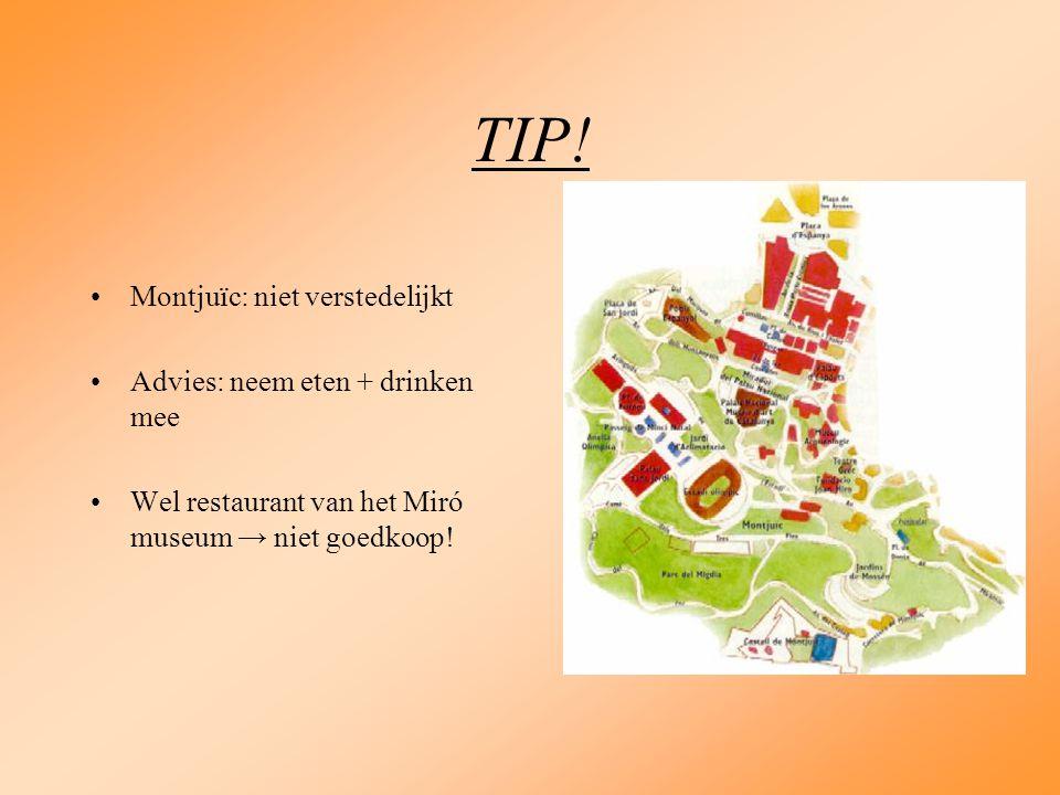 TIP! Montjuïc: niet verstedelijkt Advies: neem eten + drinken mee