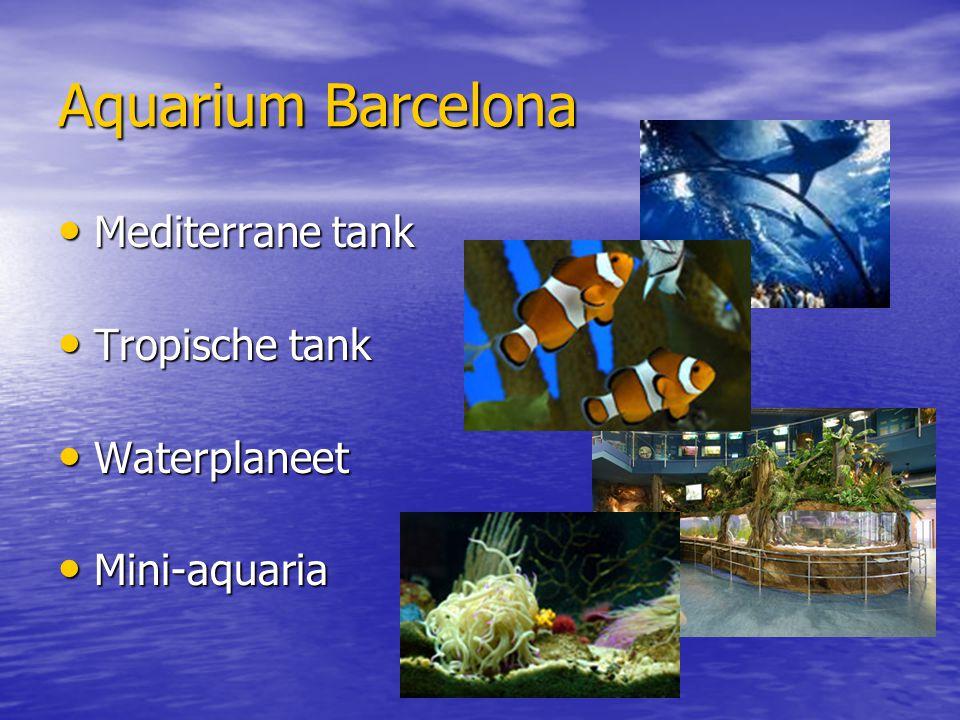 Aquarium Barcelona Mediterrane tank Tropische tank Waterplaneet
