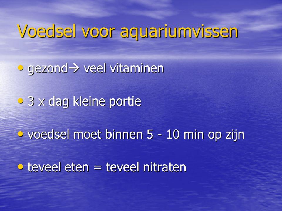 Voedsel voor aquariumvissen