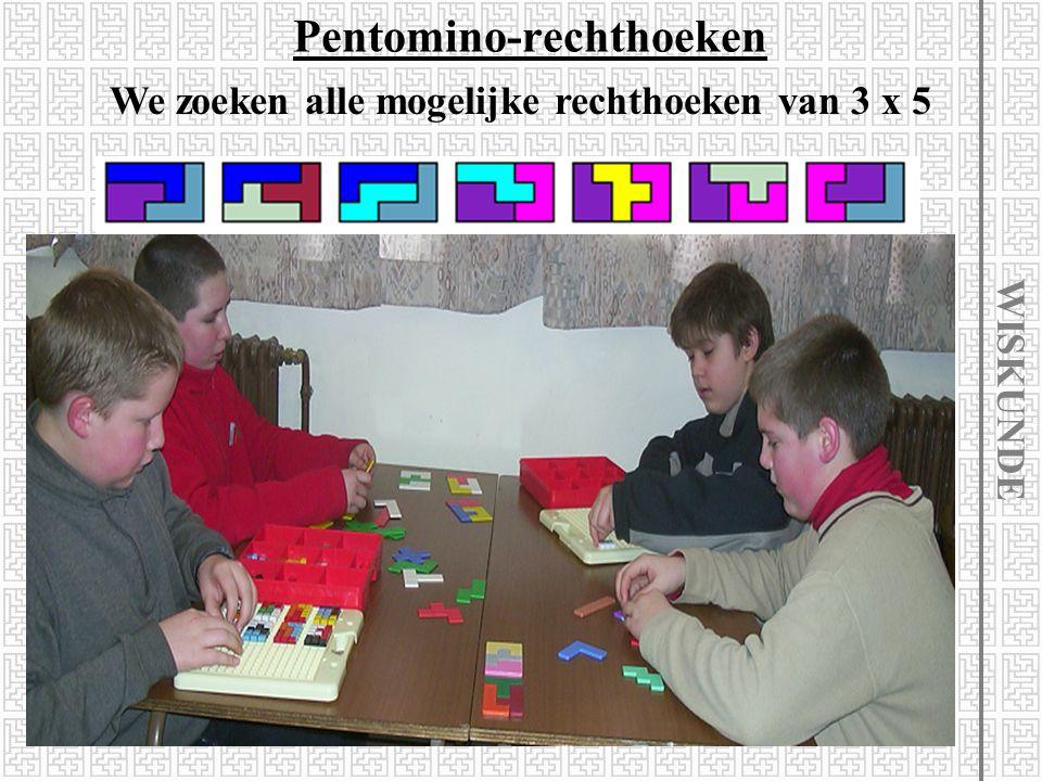Pentomino-rechthoeken