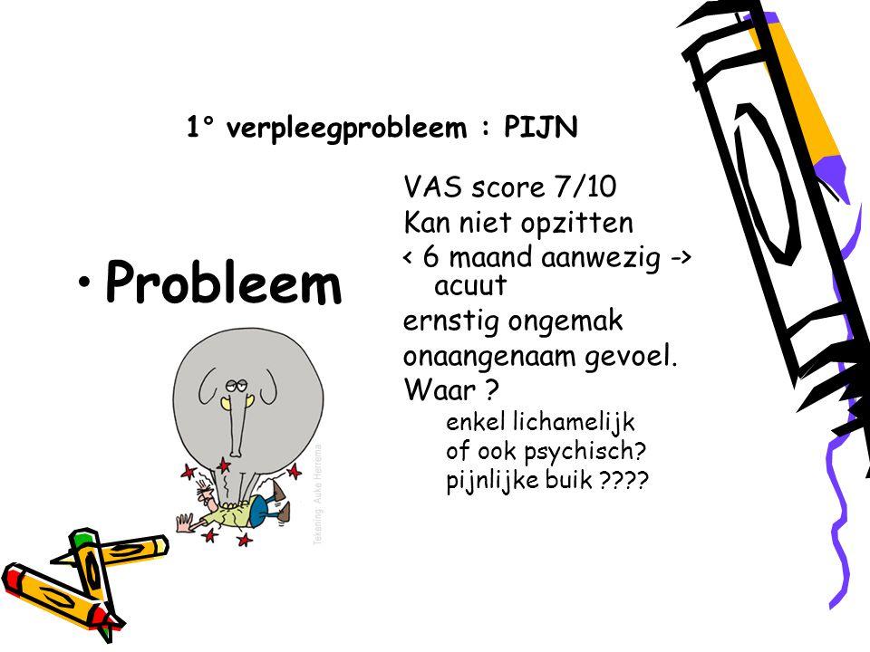 1° verpleegprobleem : PIJN