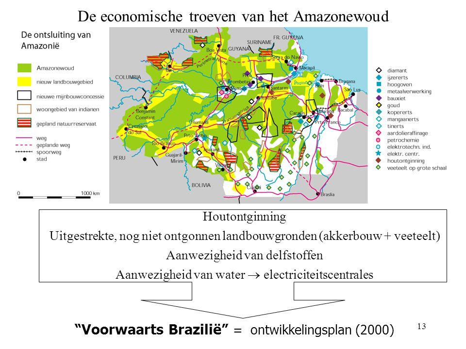 De economische troeven van het Amazonewoud