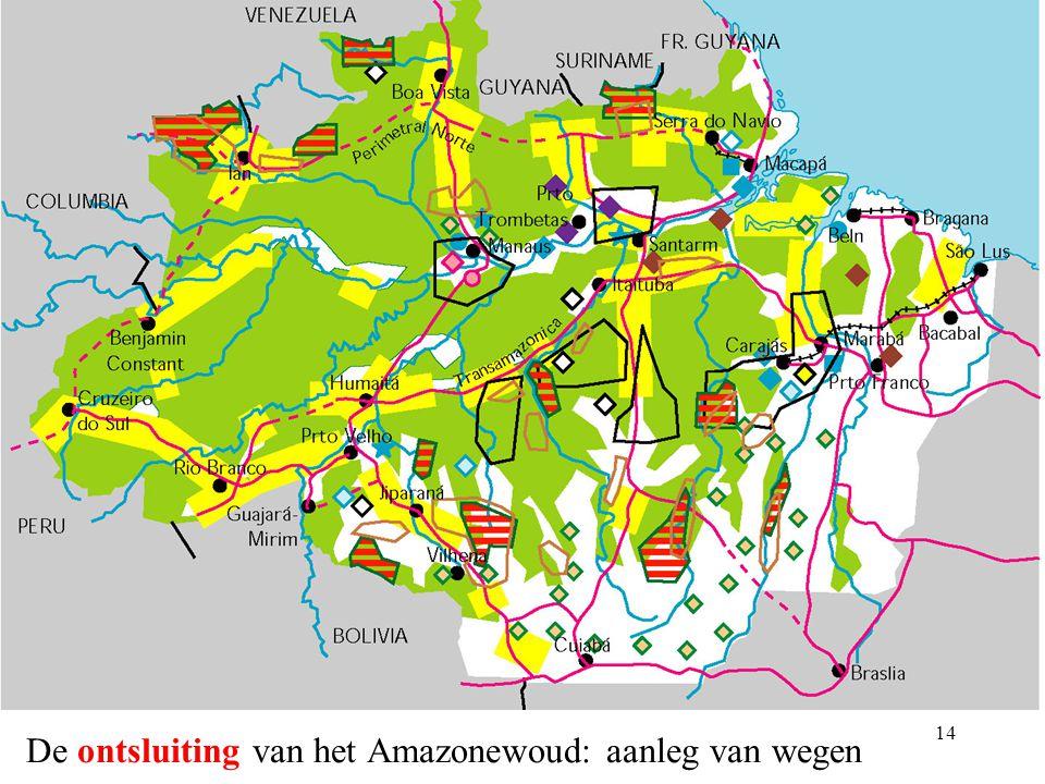 De ontsluiting van het Amazonewoud: aanleg van wegen
