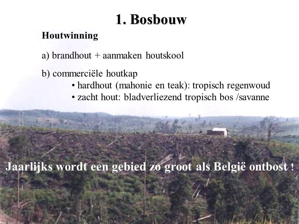 1. Bosbouw Jaarlijks wordt een gebied zo groot als België ontbost !