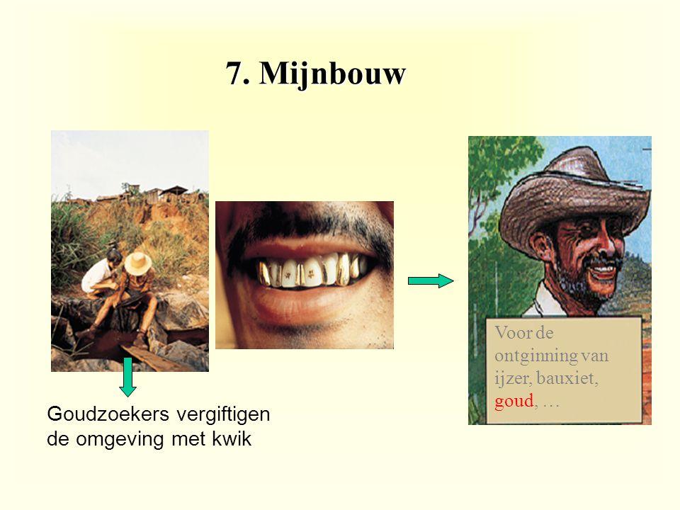 7. Mijnbouw Goudzoekers vergiftigen de omgeving met kwik