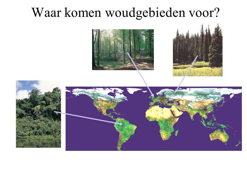 Waar komen woudgebieden voor
